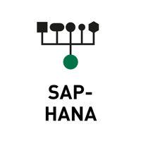 Data-Store-SAP-HANA